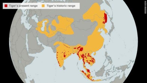 mappa area habitat tigre