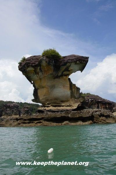 viaggiare borneo malese