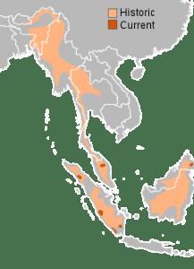 areale Rinoceronte di Sumatra