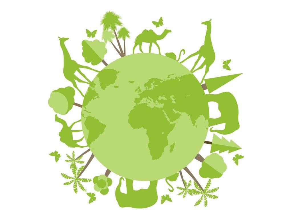 animali in pericolo di estinzione