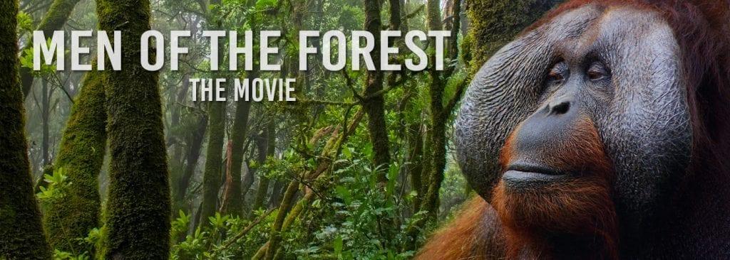 migliori documentari orangotango
