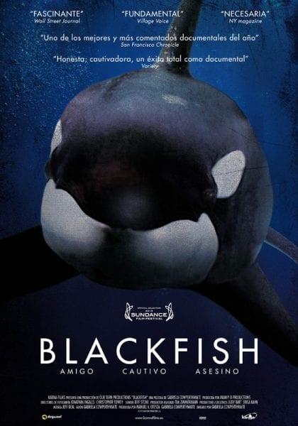 Blackfish documentario naturalistico orche
