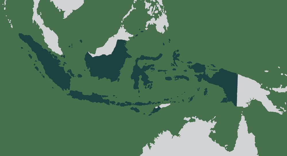 cosa vedere in indonesia