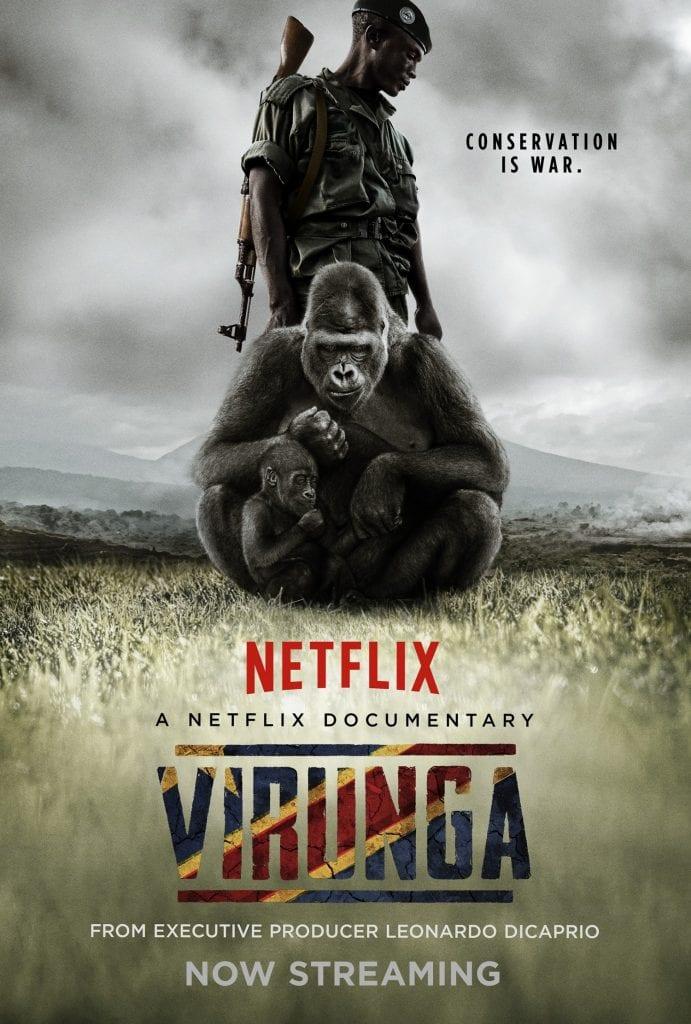 virunga documentario gorilla di montagna