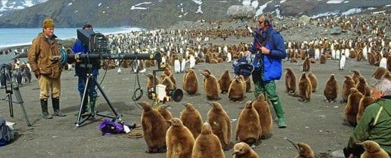 finanziare un documentario naturalistico