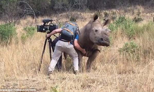 scrivere documentario natura