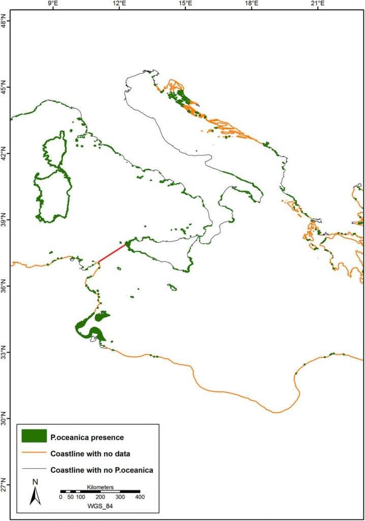 presenza posidonia oceanica in italia