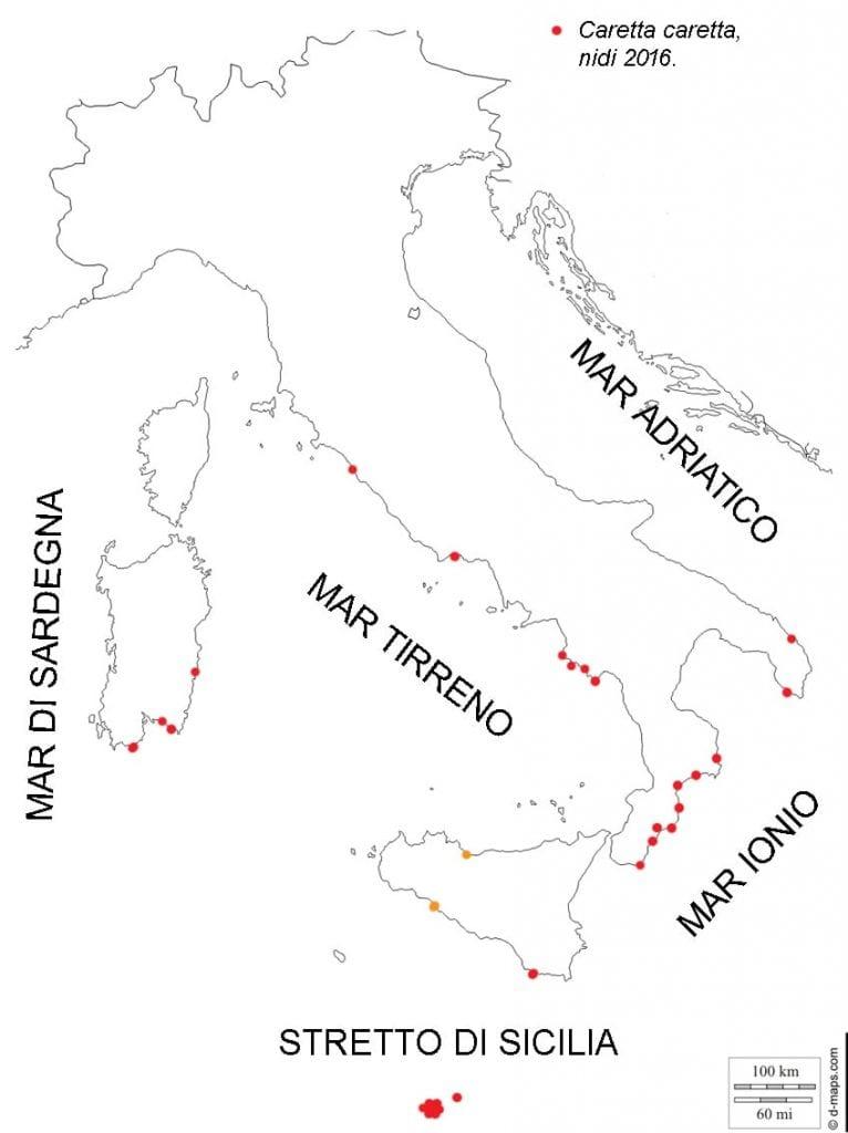 area deposizione caretta caretta italia