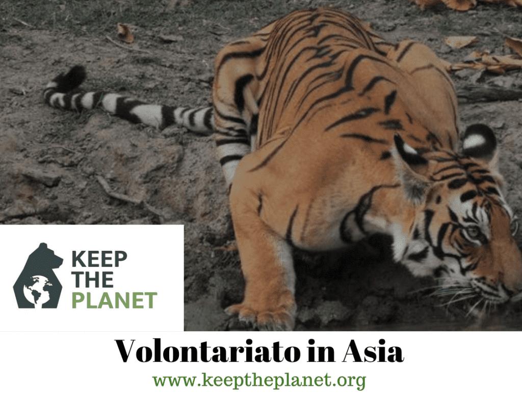 viaggi volontariato in asia