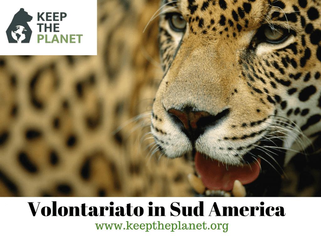 Volontariato in Sud America