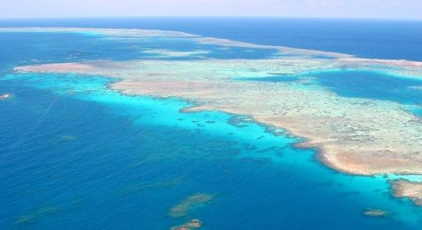 volontariato ambientale oceano pacifico