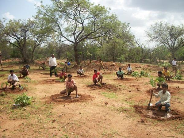 riforestare amazzonia