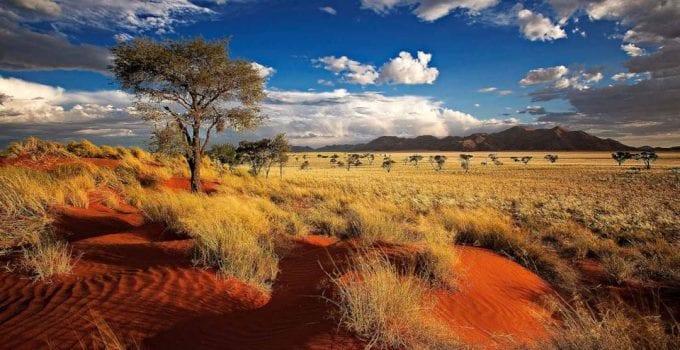 viaggio naturalistico in namibia