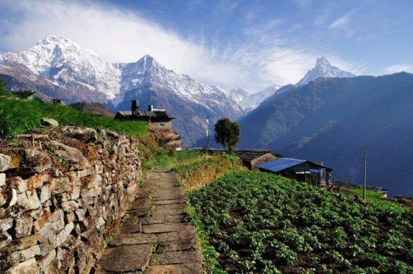 viaggio naturalistico in nepal