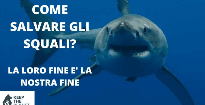 azioni per salvare gli squali