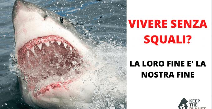perché gli squali sono importanti