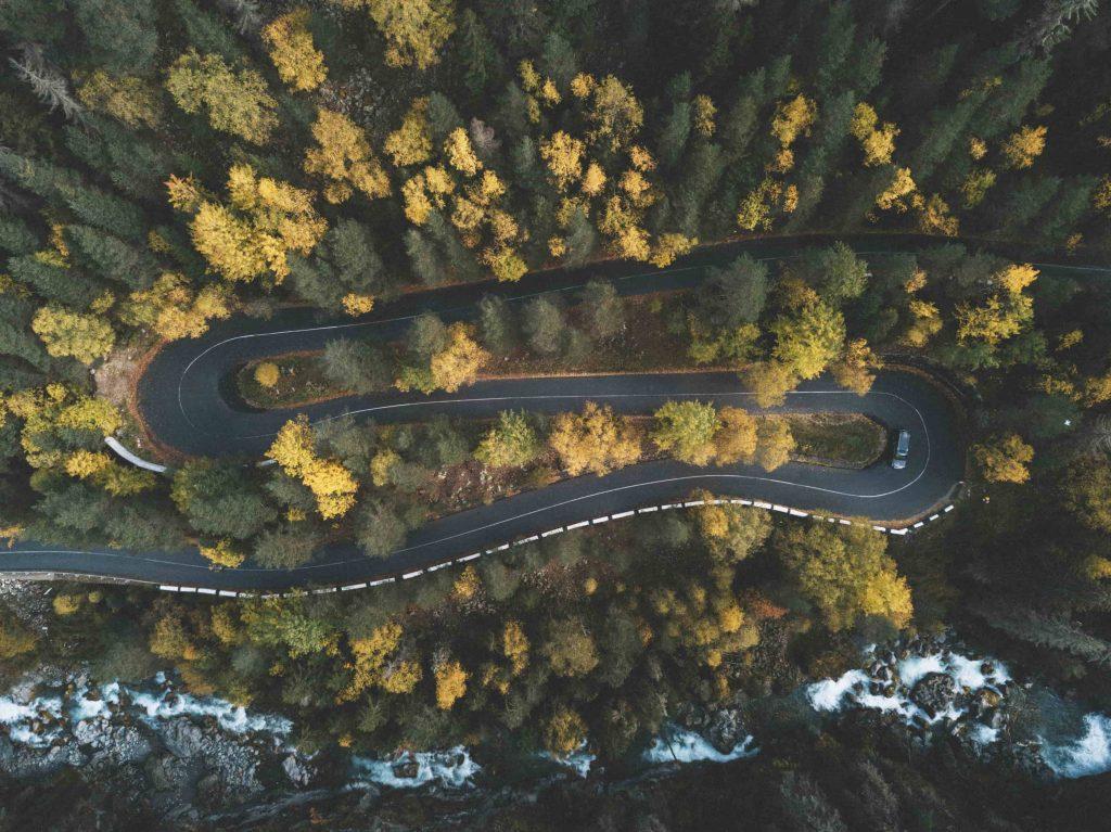 tecnologie foreste