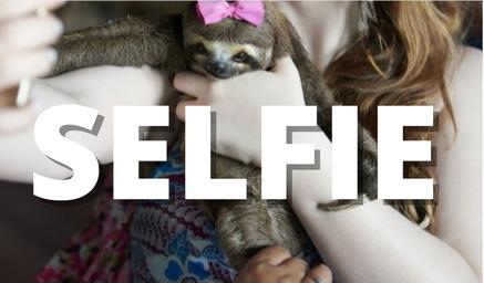 selfie animali selvatici